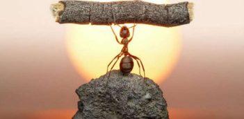 कड़ी मेहनत (Hard Work) – Life Changing Hindi Article
